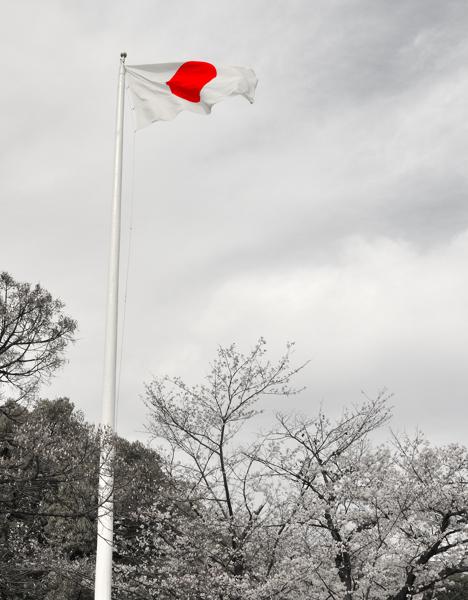 Hiroshima_Flag