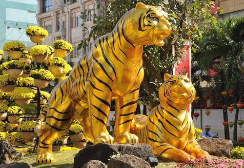 HCM_Tigers_001