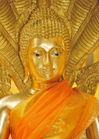 DS_Buddha_01